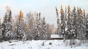 winter_cabin_300dpi
